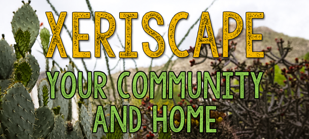 Xeriscape Your Community and Home